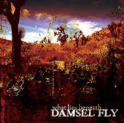 Damsel Fly - What lies beneath