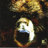Element Eighty - The Bear