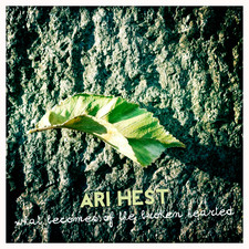 Ari Hest - What Becomes of the Broken Hearted - Single