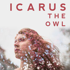 Icarus The Owl - Rearm Circuits